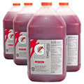 Gatorade 33977 1 Gallon Jug Liquid Concentrate (Fruit Punch) (4-Pack) image number 2