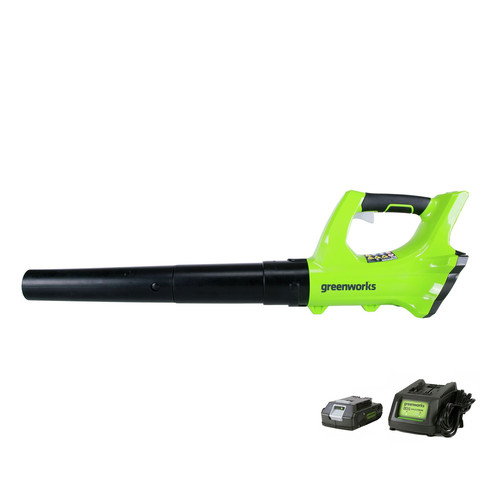 Greenworks 2400702 2400702 24V Cordless Leaf Blower with 2 Ah Battery and Charger